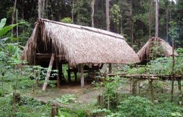 Yanomami hunting camp