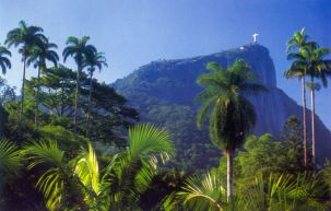 Corcovado inside Tijuca National Park