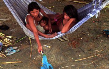 Yanomami Indios