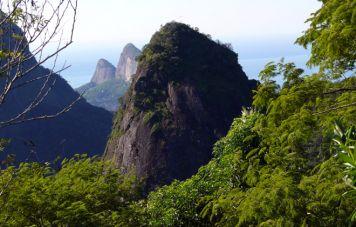 Floresta da Tijuca National Park
