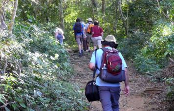 Hiking to the rainforest