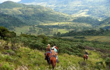 The southern Brazilian highlands