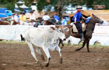 Gaúcho rodeo