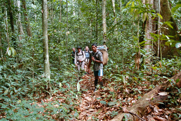 adventure trip Deep in the Amazon rainforest