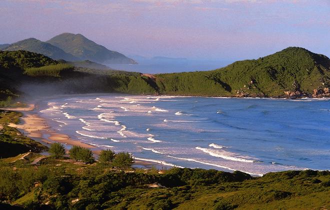 Praia Do Rosa Beach