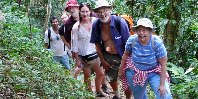 Hiking in brazil through the Atlantic Mountain Rainforest