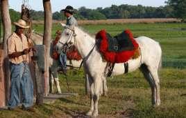 Pantaneiro with horse