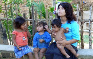 Brazilian native Guaraní