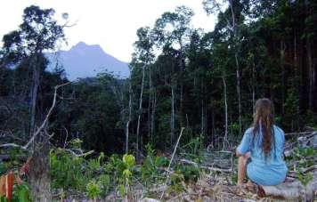 The goal: The top of Pico da Neblina