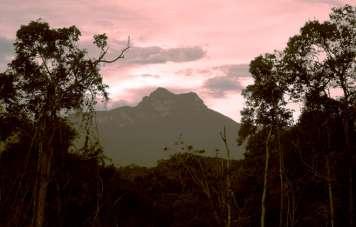 Pico da Neblina at sundown