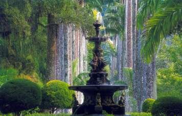The botanical gardens of Rio