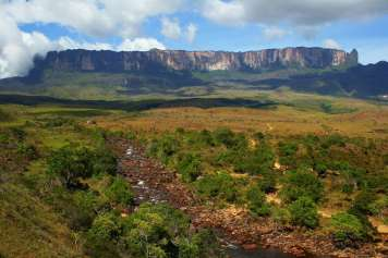 Rio Kukenan and the Mount Roraima